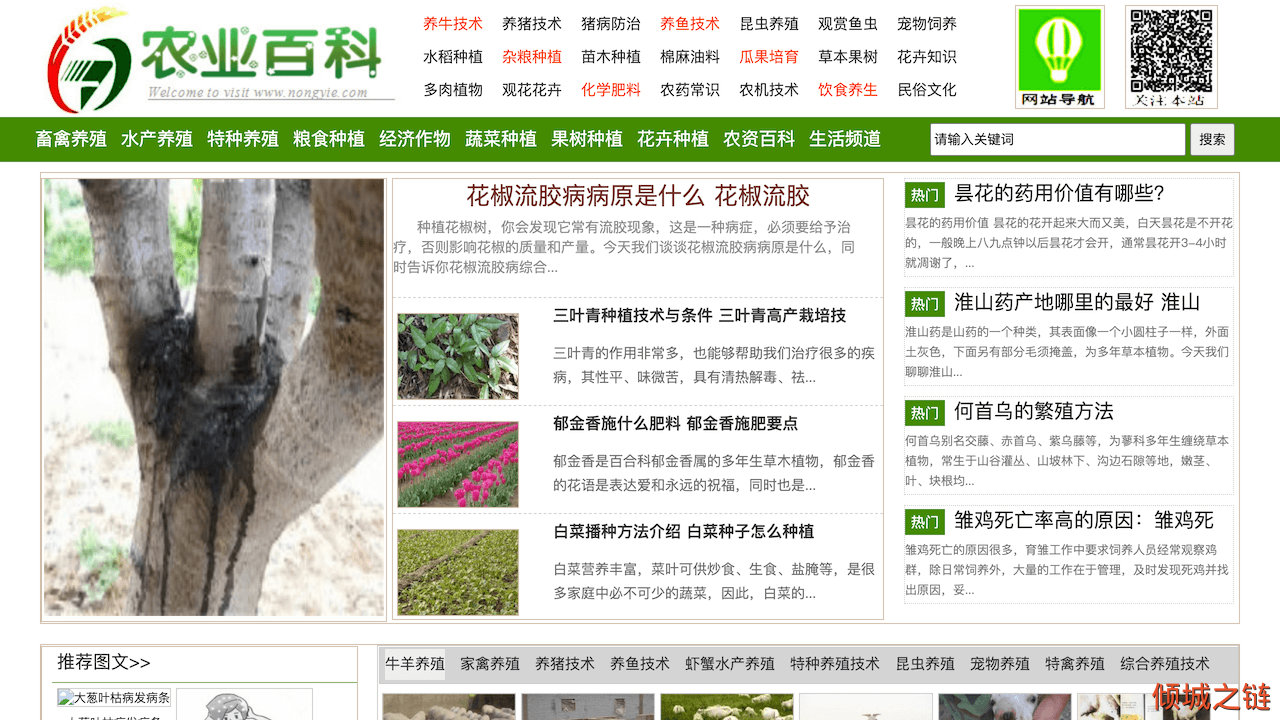 倾城之链 - 农业百科_农村养殖与农业种植技术推广网站